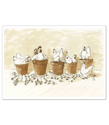 Chickens Dustbath